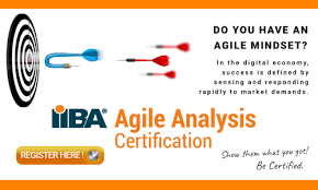 Agile Analysis - Iiba | International Institute Of Business Analysis