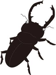 昆虫 パブリックドメインq著作権フリー画像素材集