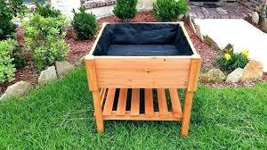 raised veg gardens vegetable garden ideas small build bed vegetables planting design
