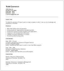 Short Objective For Resume