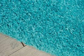 turquoise area rug idea