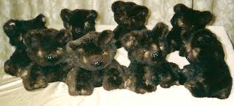 sea otter fur teddy bears