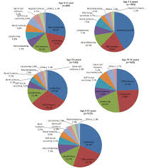 Canada Population Pie Chart Cancer In Young People In Canada A Report From The Enhanced