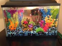 Small colorful fish tank | The Tank | Pinterest | Colorful fish and Fish  tanks
