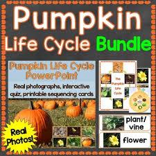 Pumpkin Life Cycle Powerpoint Teaching Resources Teachers Pay Teachers