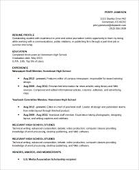 Profile Resume Examples Musiccityspiritsandcocktail Com