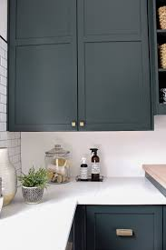 The Laundrydog Room Dark Green Cabinets Layered On Classic Black