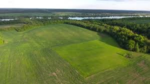 Grass field aerial Public Domain Aerial View Of River In The Fields stock Footage Videohive Aerial View Of River In The Fields By Taden Videohive