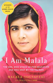 Malala Quotes Impressive I Am Malala Quotes And Analysis GradeSaver