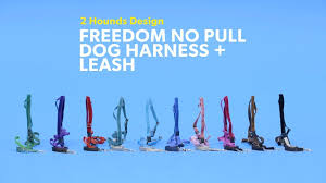2 Hounds Harness Size Chart 2houndsdesign_freedomnopulldogharnessleash_dog_r0_v2