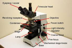 Parts Of The Microscope Microbehunter Microscopy Blog Archive Parts Of A Compound Microscope