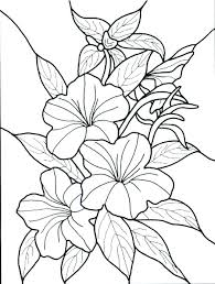 Simple Flower Color Pages Simple Flowers Coloring Pages Flower