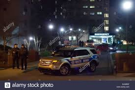 ford interceptor stock photos ford interceptor stock images alamy lexington kentucky usa 28th mar 2015 fayette county sheriff s office deputies