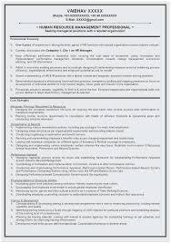 Functional Resume Sample Template Terrific Functional Resume