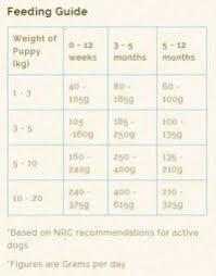 Husky Feeding Chart Puppy Feeding Chart By Weight Age