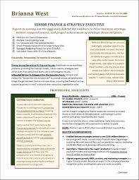 Finance Manager Resume Sample Finance Manager Resume Format Awesome Resume Template Fi Manager 33