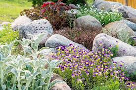 landscaping rocks for your yard garden