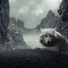 A Wolfs Secret... - Elena... - Wattpad