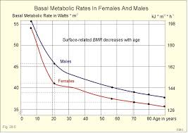 Alcohol Metabolism Rate Chart New Human Physiology Ch 20