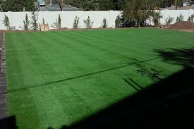 Synthetic Turf Grass Celebrity Greens
