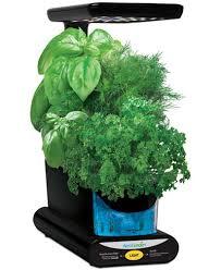 aero garden com. Aerogarden™ Sprout LED 3-Pod Smart Countertop Garden Aero Com