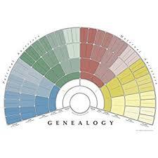 Fan Family Tree Charts Templates Amazon Com Masthof Ten Generation Ancestry Pedigree Fan