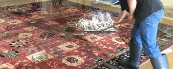 wool rug cleaning wash carpet dog urine