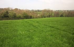 grass field from above. Wonderful Above Grass Field Above Crimple Beck Intended Field From Above K