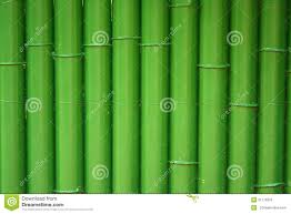 Painted Fences traditional bamboo fence painted with green stock photo image 5743 by xevi.us