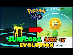 Sunkern Max Cp For All Levels Pokemon Go