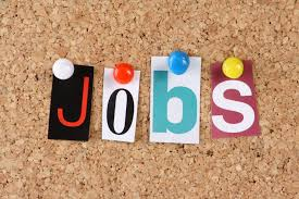 ibex village press hot job of the week sr manager channel marketing