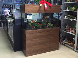 fish tank stand design ideas office aquarium. New Aquarium Designs Fish Tank Stand Design Ideas Office