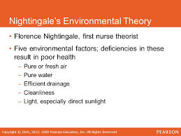 florence nightingale theory florence nightingale nursing theory custom paper service