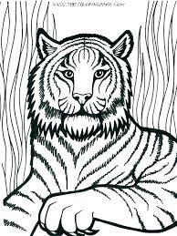 lion color page lion face coloring page coloring pages of lions lion face coloring page lion lion color page