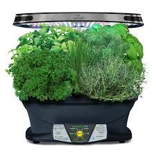 aero garden com. Delighful Aero AeroGarden Extra LED With Gourmet Herb Seed Pod Kit Amazonca Patio  Lawn U0026 Garden In Aero Com