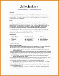Exelent Goldman Sachs Analyst Resume Model Examples Professional