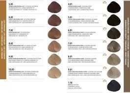 Color Design Hair Colour Chart 28 Albums Of Cpr Hair Colour Chart Explore Thousands Of