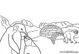 Small Picture Polar bear coloring pages Hellokidscom