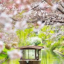 「伏見港公園」の画像検索結果