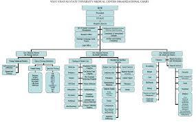 West Visayas State University Medical Center Organizational Chart