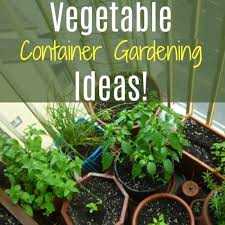 are you looking for some vegetable container gardening ideas these container gardening tips tricks