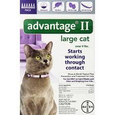 bayer advane ii flea control treatment for cats view on amazon