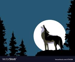 wolf howling at the moon. Perfect Wolf Wolf Howling At The Moon Vector Image Throughout Howling At The Moon O