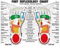 Sinus Foot Reflexology Chart Sinus Frontal Maxillary Ethmoid