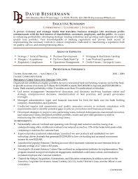 Resume Executive Summary Sample Professional Resume Templates