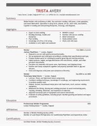30 Tig Welder Resume Download Best Resume Templates