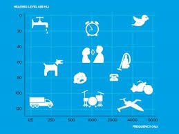 Hearing Chart Degrees Of Hearing Loss How Severe Is Your Hearing Loss
