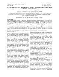 personal essay for english undergraduate