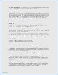 Resume Professional Summary Sample Free Resume Samples Skills And