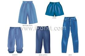Images Of Pants Clothing Womens Clothing Examples Of Pants Image Visual